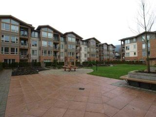 """Photo 20: 412 1111 E 27TH Street in North Vancouver: Lynn Valley Condo for sale in """"BRANCHES"""" : MLS®# V1035642"""