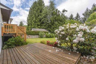 Photo 5: 21355 THORNTON Avenue in Maple Ridge: West Central House for sale : MLS®# R2585991