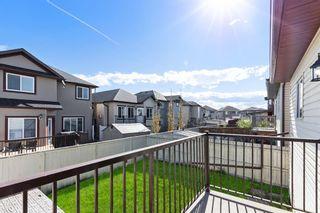 Photo 15: 13 TARALAKE Heath NE in Calgary: Taradale Detached for sale : MLS®# A1112672