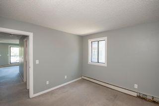 Photo 14: 201 611 67 Avenue SW in Calgary: Kingsland Apartment for sale : MLS®# A1124707