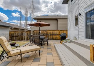 Photo 38: 44 ELGIN MEADOWS Manor SE in Calgary: McKenzie Towne Detached for sale : MLS®# A1103967