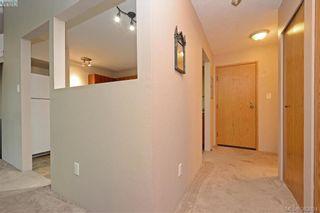 Photo 16: 306 3215 Alder St in VICTORIA: SE Quadra Condo for sale (Saanich East)  : MLS®# 770983
