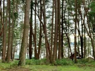 Photo 11: lot 7 Salal Dr in : Isl Mudge Island Land for sale (Islands)  : MLS®# 863615