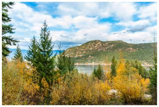 Photo 11: 2391 Mt. Tuam: Blind Bay House for sale (Shuswap Lake)  : MLS®# 10125662