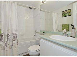 Photo 19: 311 2678 DIXON Street in Port Coquitlam: Central Pt Coquitlam Condo for sale : MLS®# V1051693
