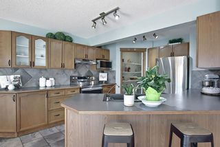 Photo 10: 127 Chapman Circle SE in Calgary: Chaparral Detached for sale : MLS®# A1110605