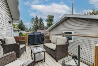 Photo 23: 4203 Dalhart Road NW in Calgary: Dalhousie Detached for sale : MLS®# A1143052