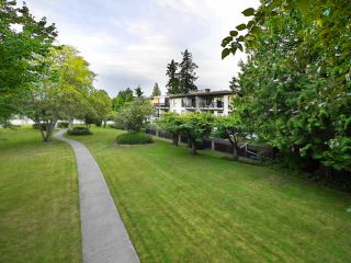 """Main Photo: 310 9952 149 Street in Surrey: Guildford Condo for sale in """"Tall Timbers"""" (North Surrey)  : MLS®# R2091583"""