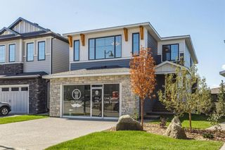 Main Photo: 205 Spring Willow Street SW in Calgary: Springbank Hill Detached for sale : MLS®# A1148527