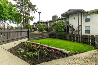 Photo 6: 9235 172 Street in Edmonton: Zone 20 Carriage for sale : MLS®# E4251853