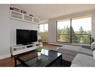 """Photo 2: 1004 320 ROYAL Avenue in New Westminster: Downtown NW Condo for sale in """"THE PEPPERTREE"""" : MLS®# V1142819"""