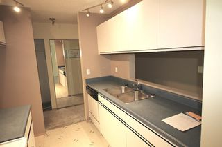 Photo 3: 314 10 Dover Point SE in Calgary: Dover Apartment for sale : MLS®# A1073058