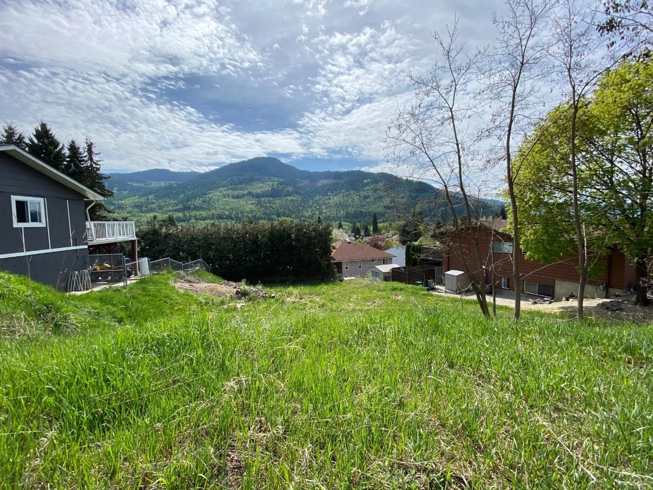 Main Photo: 913 7TH STREET in Montrose: Vacant Land for sale : MLS®# 2458356