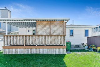 Photo 5: 139 Appletree Close SE in Calgary: Applewood Park Detached for sale : MLS®# A1022936