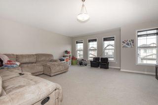Photo 19: 3538 CLAXTON Crescent in Edmonton: Zone 55 House for sale : MLS®# E4256610