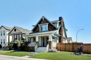 Photo 32: 101 Copperfield Gardens SE in Calgary: House for sale : MLS®# C4019487