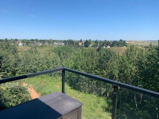 Photo 18: 420 592 HOOKE Road NW in Edmonton: Zone 35 Condo for sale : MLS®# E4258198
