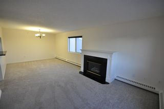 Photo 5: 306 790 Kingsmere Crescent SW in Calgary: Kingsland Apartment for sale : MLS®# A1065637