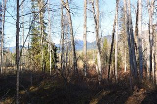 Photo 12: LOT A KLOECKNER Road in Smithers: Smithers - Rural Land for sale (Smithers And Area (Zone 54))  : MLS®# R2598861