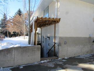 Photo 14: 30 Geneva Crescent in St. Albert: Basement Suite for rent