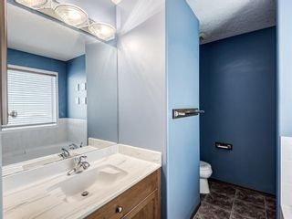 Photo 26: 57 Brightondale Parade SE in Calgary: New Brighton Detached for sale : MLS®# A1057085