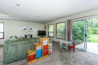 Photo 18: 20247 PATTERSON Avenue in Maple Ridge: Southwest Maple Ridge House for sale : MLS®# R2279033