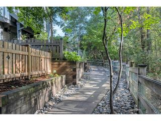"""Photo 2: 37 20038 70 Avenue in Langley: Willoughby Heights Townhouse for sale in """"Daybreak"""" : MLS®# R2616047"""