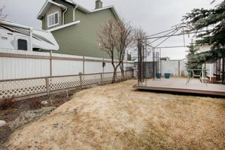 Photo 29: 227 Canals Boulevard SW: Airdrie Detached for sale : MLS®# A1091783