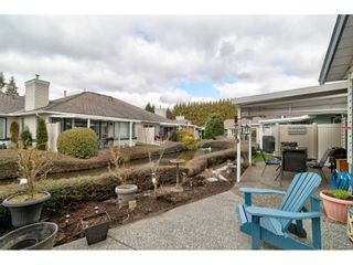 """Photo 35: 17 5550 LANGLEY Bypass in Langley: Langley City Townhouse for sale in """"Riverwynde"""" : MLS®# R2549482"""