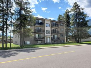Photo 4:  in East Kootenays: Multifamily for sale