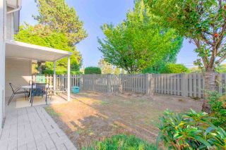 """Photo 19: 11 5983 FRANCES Street in Burnaby: Capitol Hill BN Townhouse for sale in """"SATURNA"""" (Burnaby North)  : MLS®# R2396378"""