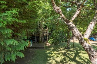 Photo 18: 3988 Craig Rd in : CR Campbell River South House for sale (Campbell River)  : MLS®# 882531