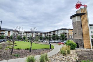 Photo 32: 1406 240 Skyview Ranch Road NE in Calgary: Skyview Ranch Apartment for sale : MLS®# A1139810