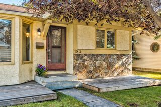 Photo 50: 183 Shawmeadows Road SW in Calgary: Shawnessy Detached for sale : MLS®# A1127759