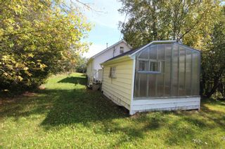 Photo 8: : Rural Camrose County House for sale : MLS®# E4262815