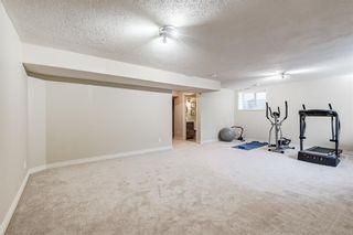 Photo 33: 53 Silverado Skies Drive SW in Calgary: Silverado Detached for sale : MLS®# A1121435