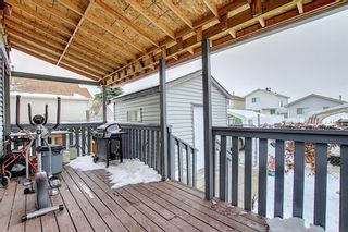 Photo 33: 47 Appleburn Close SE in Calgary: Applewood Park Detached for sale : MLS®# A1049300