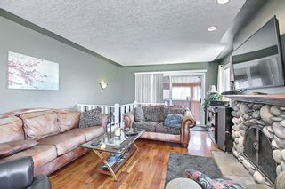 Photo 7: 1435 16 Street NE in Calgary: Mayland Heights Detached for sale : MLS®# A1099048