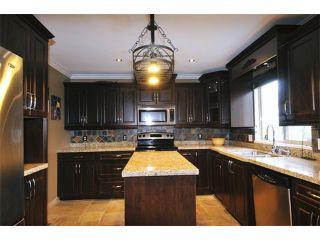 "Photo 3: 23635 TAMARACK Lane in Maple Ridge: Albion House for sale in ""KANAKA RIDGE"" : MLS®# V1054602"
