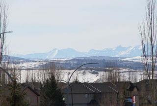 Photo 4: 302 52 CRANFIELD Link SE in Calgary: Cranston Apartment for sale : MLS®# A1074449
