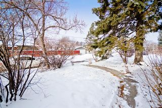 Photo 9: 3304 3 Street NW in Calgary: Highland Park Detached for sale : MLS®# A1066962