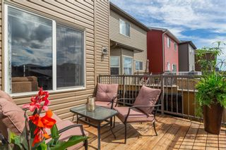 Photo 29: 163 EVANSBOROUGH Crescent NW in Calgary: Evanston Detached for sale : MLS®# A1012239