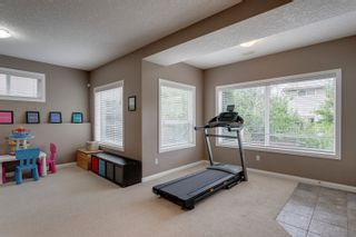 Photo 38: 23 Royal Crest Way NW in Calgary: Royal Oak Detached for sale : MLS®# A1118520