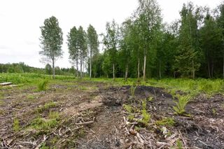 Photo 20: DL 1335A 37 Highway: Kitwanga Land for sale (Smithers And Area (Zone 54))  : MLS®# R2471833