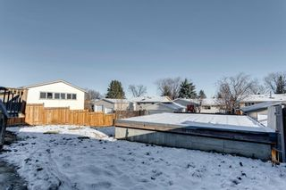 Photo 47: 3812 49 Street NE in Calgary: Whitehorn Detached for sale : MLS®# A1054455