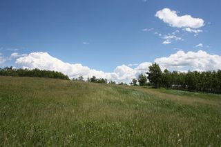 Photo 18: 224061 274 Avenue W: Rural Foothills County Residential Land for sale : MLS®# A1095002