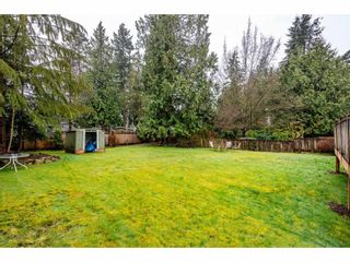 Photo 37: 34268 GREEN Avenue in Abbotsford: Abbotsford East House for sale : MLS®# R2556536