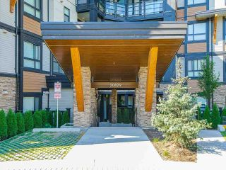 """Photo 36: 310 20829 77A Avenue in Langley: Willoughby Heights Condo for sale in """"THE WEX"""" : MLS®# R2495955"""