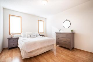 Photo 18: 123 Redonda Street in Winnipeg: Canterbury Park Residential for sale (3M)  : MLS®# 202107335