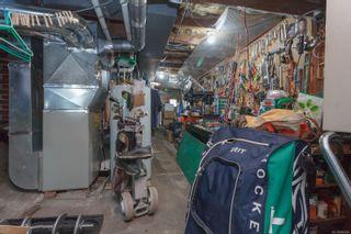 Photo 17: 1038 Wollaston St in : Es Old Esquimalt House for sale (Esquimalt)  : MLS®# 866968